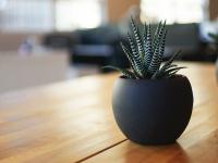 europa-radreisen.at