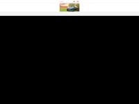 Freiberger-stiger.at