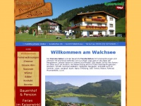 anker-walchsee.at