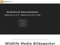 wildlife-media.at