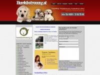 hundebetreuung.at