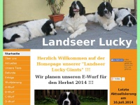 landseer-lucky-giants.at