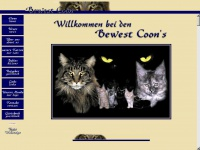 Maine-coon-bewest.at