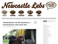 Newcastle-labs.at