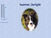 austrian-starlight.at