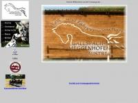 Rfg-gallspach.at