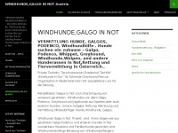 Windhunde-in-not.at