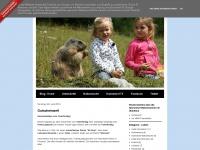 hanneshoffilzmoos.blogspot.com