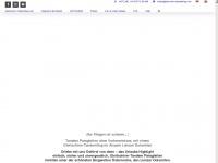 gleitschirm-tandemflug.com