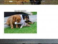 cavaliere-von-der-kleeblattwiese.at