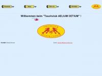 aeliumcetium.at