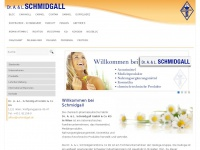 dr-schmidgall.at