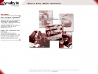dyna-byte.at